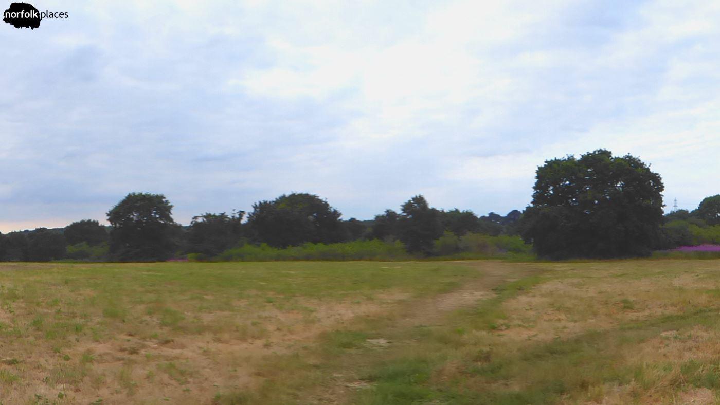 A Walk Around Swardeston Common